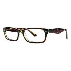 vivid-collection-vivid-800-eyeglasses-Tortoise-Green